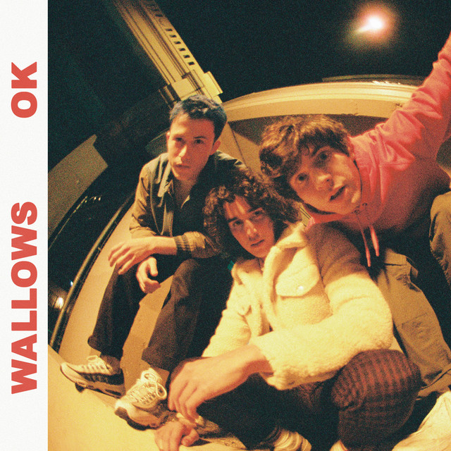 The album cover for OK by Wallows