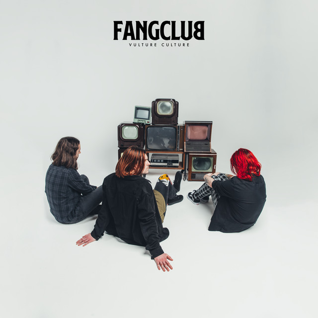 The album cover for Vulture Culture by Fangclub